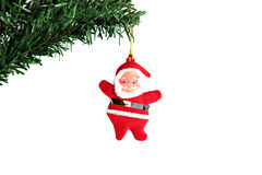 Santa hanging on branch Christmas tree. Stock Images