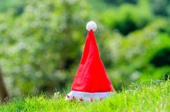 Santa hat on green park outdoor. Royalty Free Stock Images