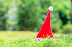 Santa hat on green park outdoor. Stock Photo