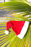Santa hat on palm leaf Stock Images