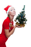 Santa helper with Christmas tree Royalty Free Stock Photo