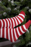 Santa Helper Socks By Tree Stock Image