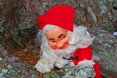 Santa heureuse dans les bois Photographie stock libre de droits