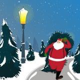 Santa holding Xmas Tree for Christmas celebration. Santa Claus holding big Xmas Tree on his back for Merry Christmas celebration Royalty Free Stock Images