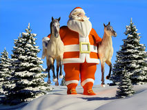 Santa with horses. In the hands of the forest Stock Images