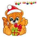 santa kapeluszowy tygrys Zdjęcie Royalty Free