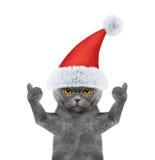 Santa kot pokazuje kciuk i powitania up Zdjęcie Royalty Free