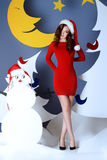 Santa lady royalty free stock image