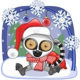 Santa Lemur Stock Photo