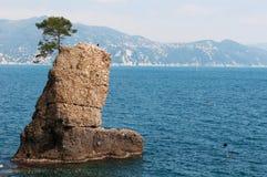 Santa Margherita Ligure, genua, Liguria, Włochy, włoszczyzna Riviera, Europa Zdjęcia Royalty Free