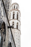 Santa Maria del Mar in the Gothic quarters of Barcelona Royalty Free Stock Photo