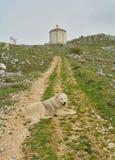 Santa Maria della Pietà Church view. With a dog Royalty Free Stock Photography