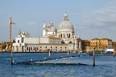Santa Maria Della Salute in Venice Stock Photos