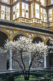 Santa Maria delle Grazie, cloister Royalty Free Stock Photo