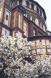 Santa Maria delle Grazie, cloister. Cloister of Santa Maria delle Grazie (Milan, Lombardy, Italy) with garden stock photo