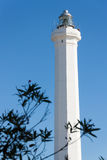 Santa maria lighthouse of Leuca Stock Images