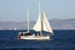 Santa Maria Sailing-boot, een jacht van San Francisco Sailing Company stock afbeelding