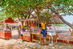 SANTA MARTA COLOMBIA - OKTOBER 10, 2017: Oidentifierad kvinna på utomhus- sälja nytt förberedda fruktfruktsafter på ställningen Royaltyfri Bild