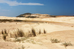 Santa Marta Dunes Santa Catarina Brazil Royalty Free Stock Photo