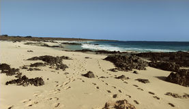 Santa Minica Beach Royalty-vrije Stock Afbeelding