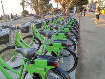 Santa Monica Breeze Bikes royalty free stock photo