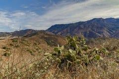 Santa Monica Landscape Imagem de Stock