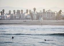 Santa Monica Pier Στοκ Εικόνες