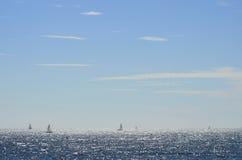 Santa Monica Sailing Boat Foto de Stock