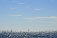 Santa Monica Sailing Boat Stock Photo