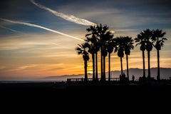 Santa Monica Sunset. A sunset in Santa Monica, California with silhouetted palm trees Royalty Free Stock Photo