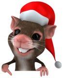 Santa mouse Stock Photos
