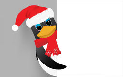 Santa penguin. Penguin in santa hat peeking Royalty Free Stock Photo