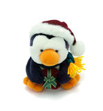 Santa Penguin with present. Cuddly penguin wearing a santa hat and holding a present Stock Photos