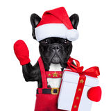 Santa pies Zdjęcie Stock