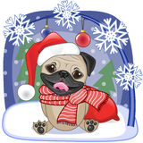 Santa Pug Dog Royalty Free Stock Photography