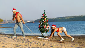 Santa pulling Christmas tree Royalty Free Stock Photo