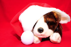 Santa Puppy. A stuff toy puppy with santa hat Royalty Free Stock Photography