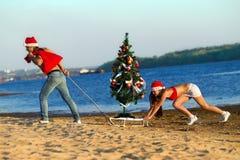 Santa que puxa a árvore de Natal Fotos de Stock