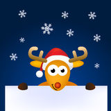 Santa rein deer cartoon card Stock Images