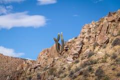 Santa Rosa de Tastil Village Mountains och Cardones kaktus - Santa Rosa de Tastil, Salta, Argentina royaltyfria foton