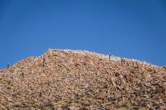 Santa Rosa de Tastil Village Mountains och Cardones kaktus - Santa Rosa de Tastil, Salta, Argentina royaltyfri foto