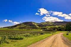Santa Rosa Road Lompac California Sanford vinodling arkivfoto