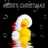 Santa Rubber Duck Christmas Background Lizenzfreies Stockfoto