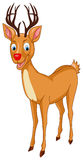 Santa Rudolph Reindeer Στοκ εικόνες με δικαίωμα ελεύθερης χρήσης
