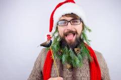 Santa`s decorated beard Stock Image