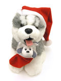 Santa's Dog. Isolated Santa Claus Dog Stock Image