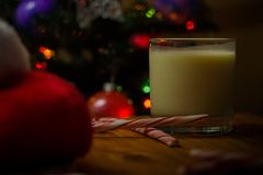 Santa& x27; s-fest Royaltyfria Bilder