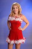 Santa's helper Stock Photography