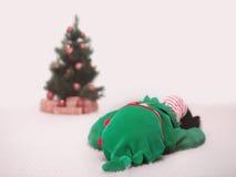 Santa's little helper Royalty Free Stock Images