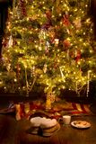 Santa's Little treat Stock Image